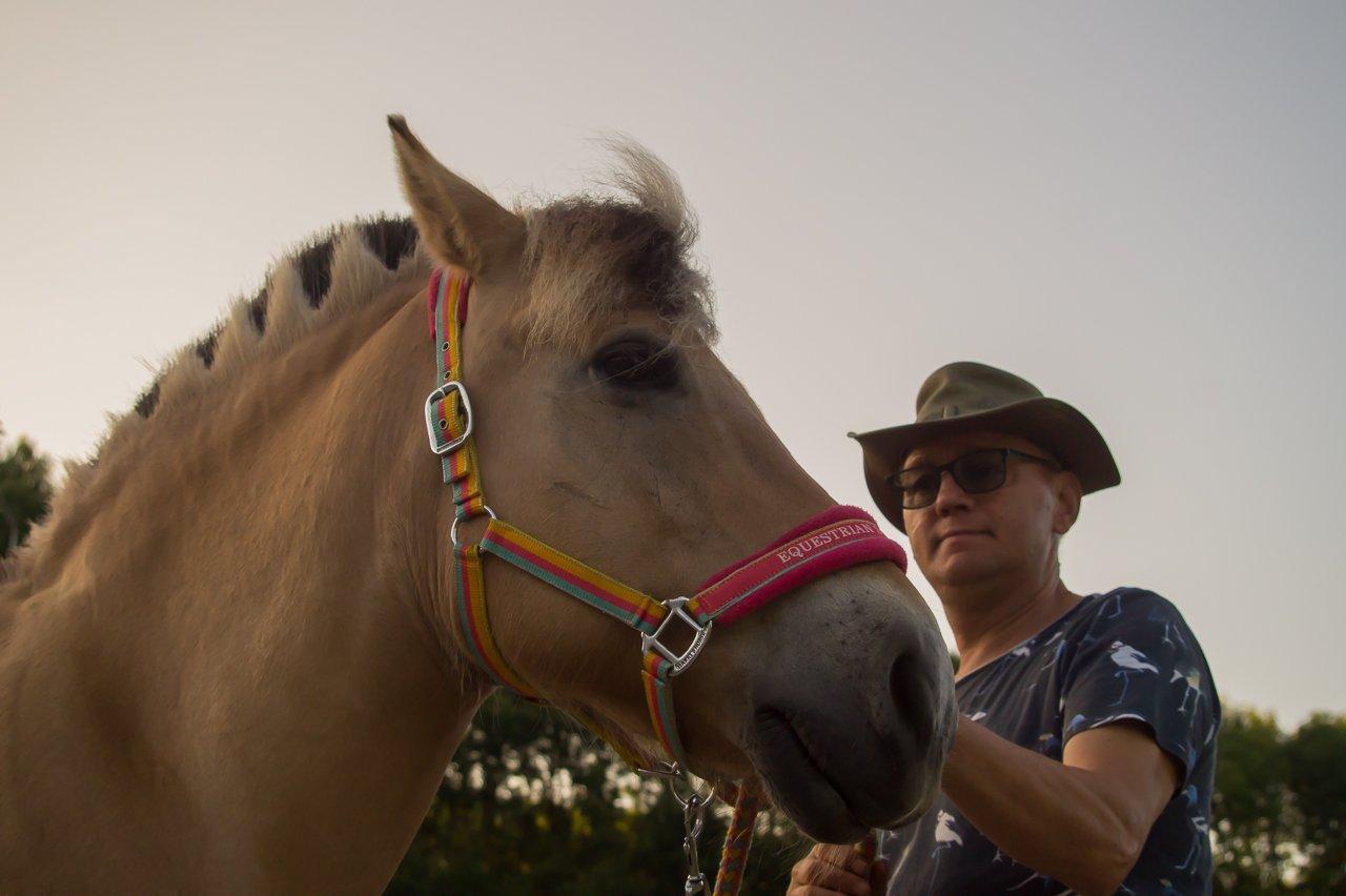 Alg3 paarden (7)