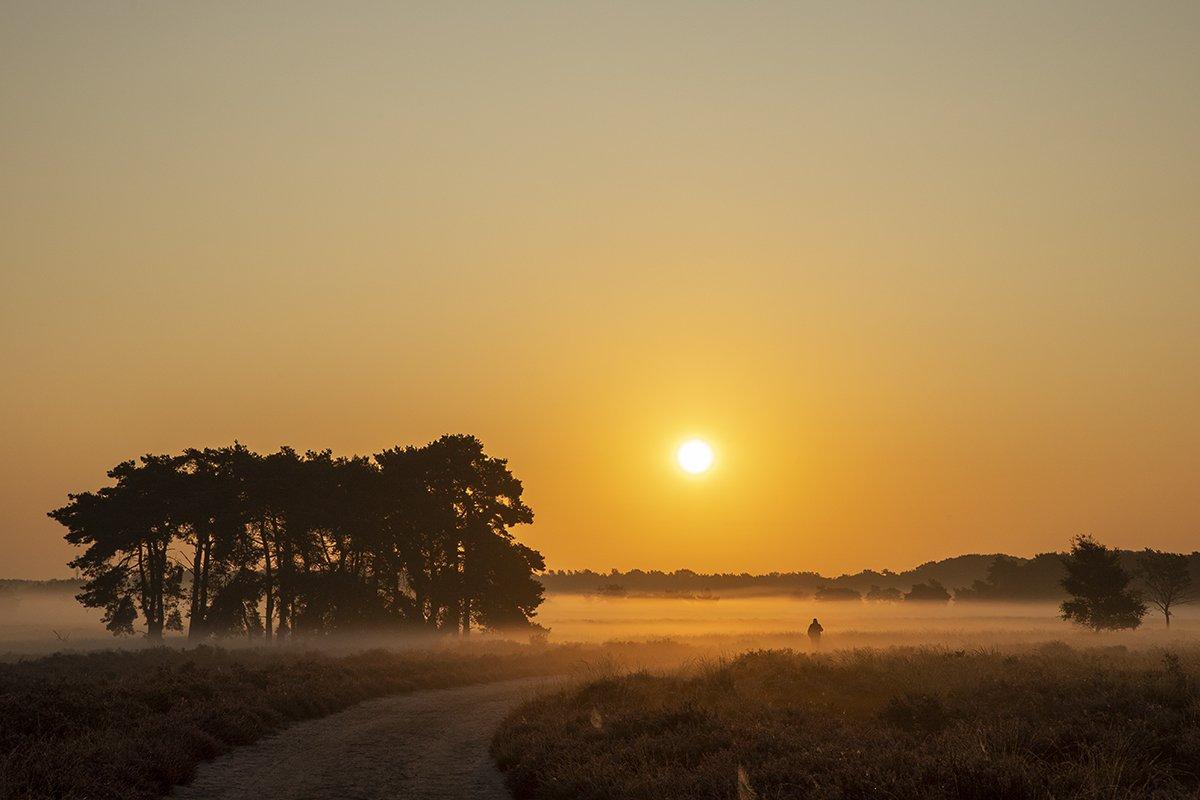 natuur 3 Regte Heide