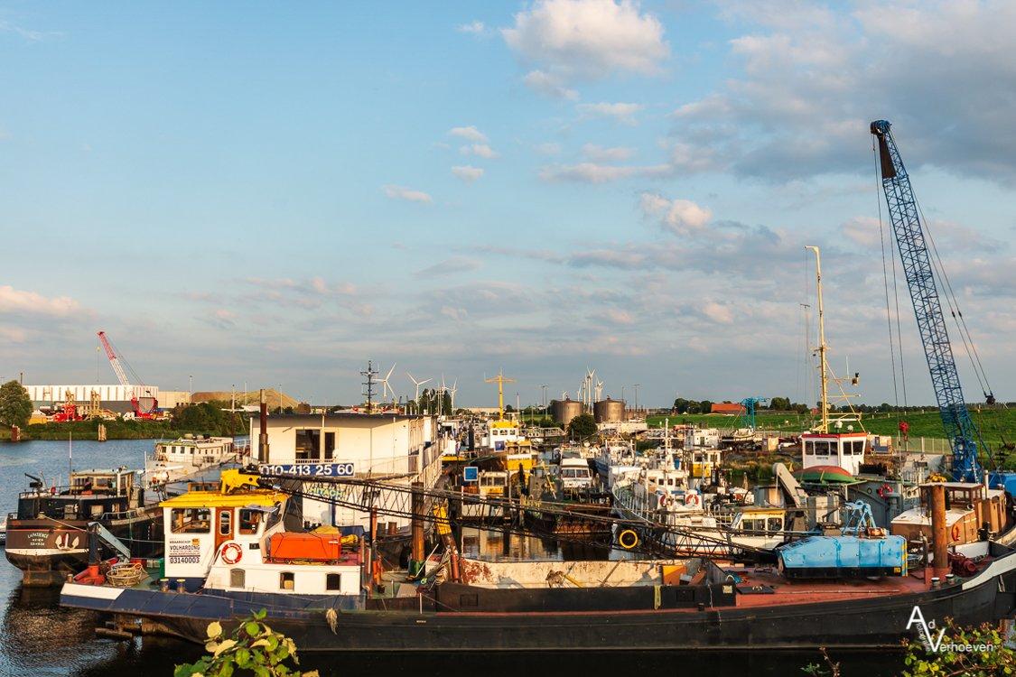 Algemeen 1 Dintelmond en Willemstad (10)