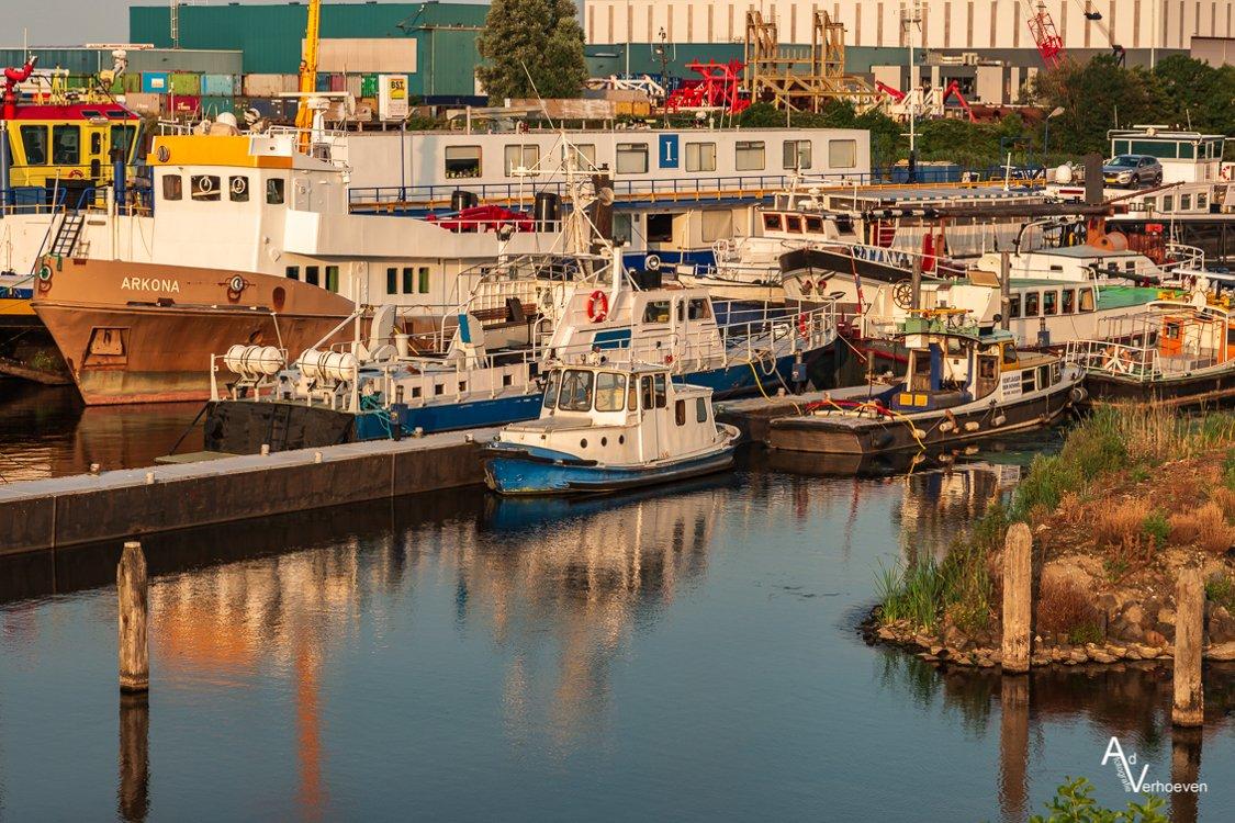 Algemeen 1 Dintelmond en Willemstad (11)