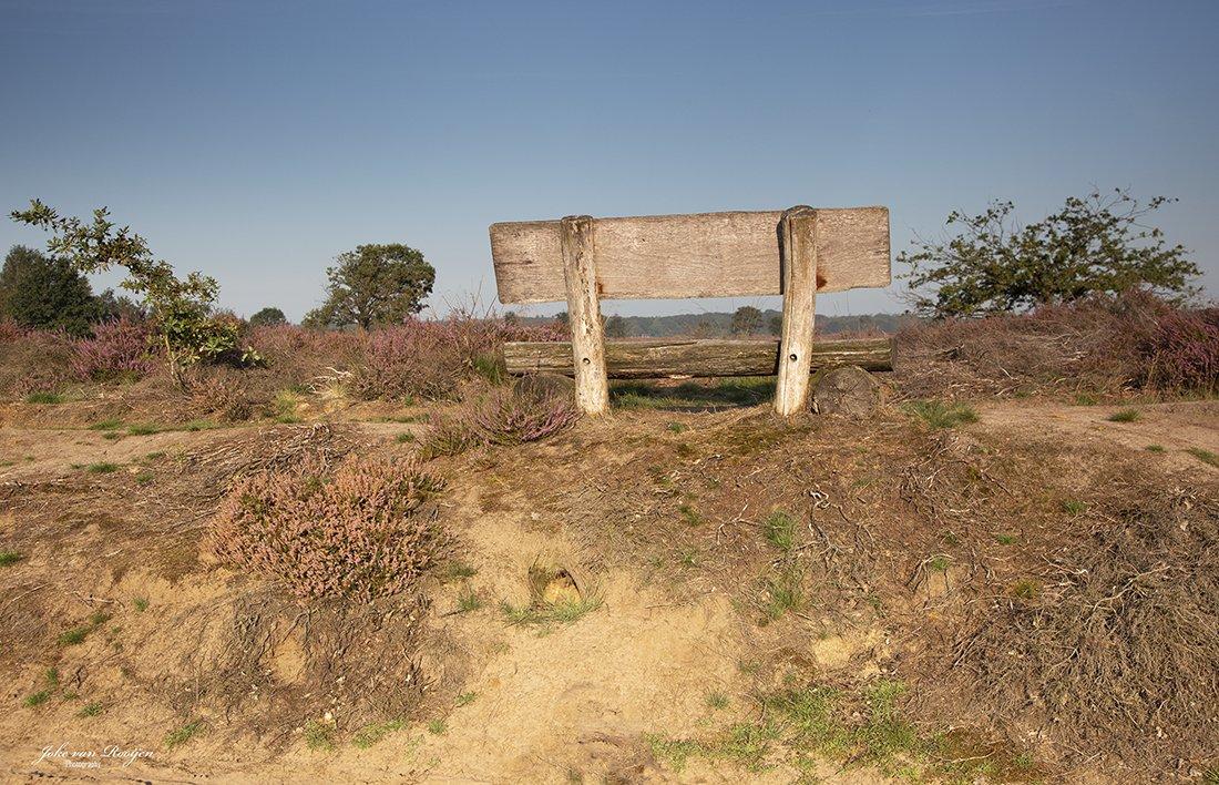 natuur 3 Regte Heide (26)