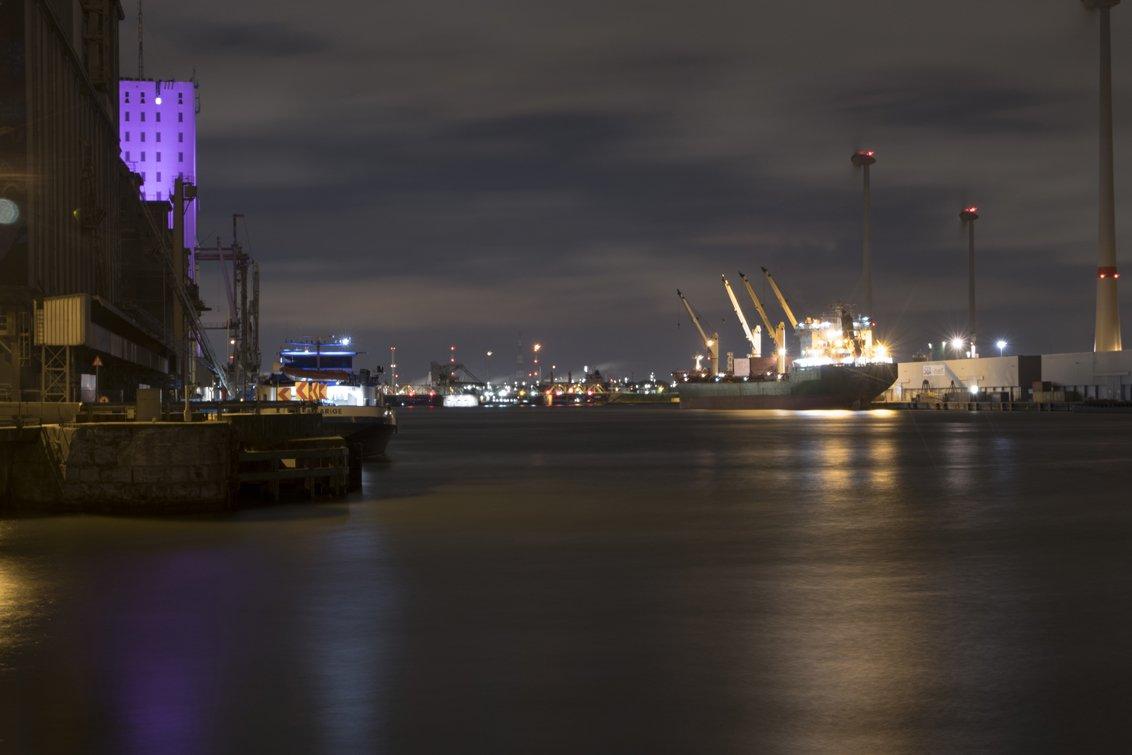 natuur 3 Antwerpen (01)
