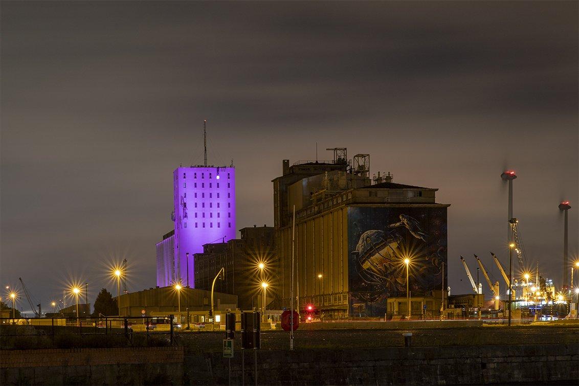 natuur 3 Antwerpen (04)