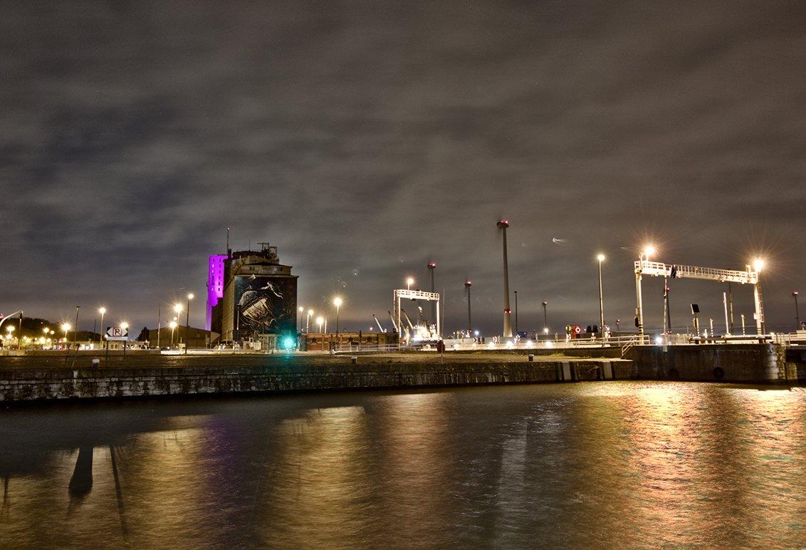 natuur 3 Antwerpen (19)