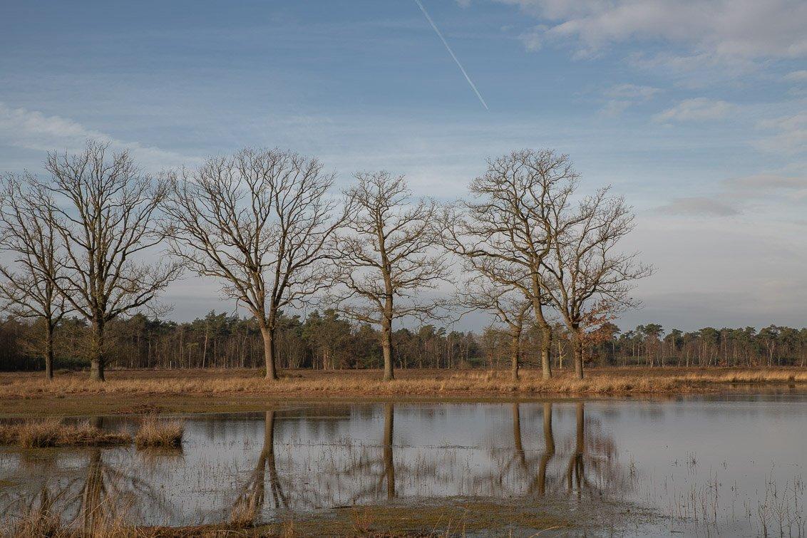 natuur 3 Galderse Heide (4)