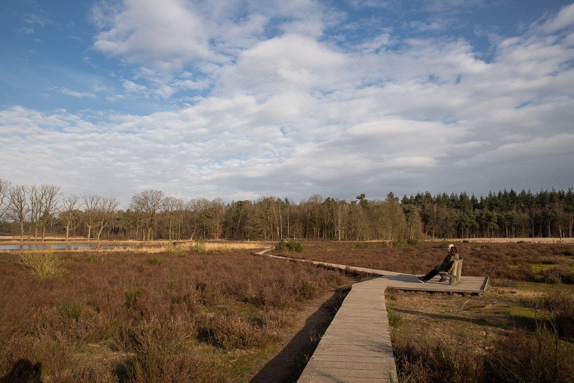 natuur 3 Galderse Heide (5)