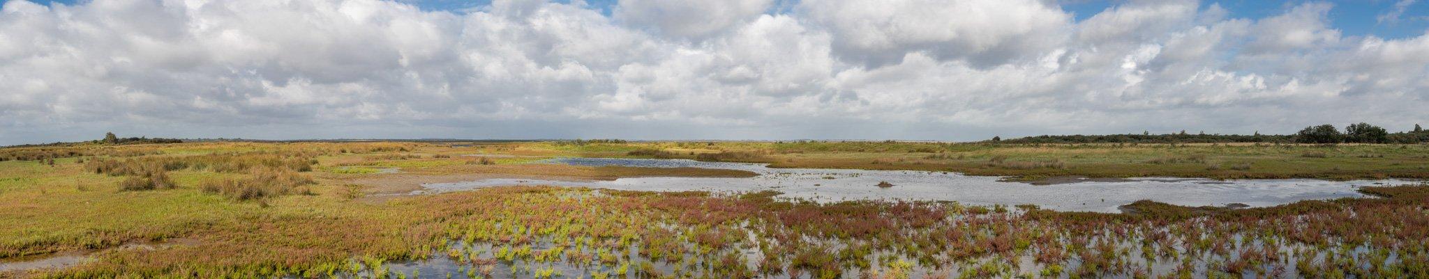 natuur 3 Flakkee panorama