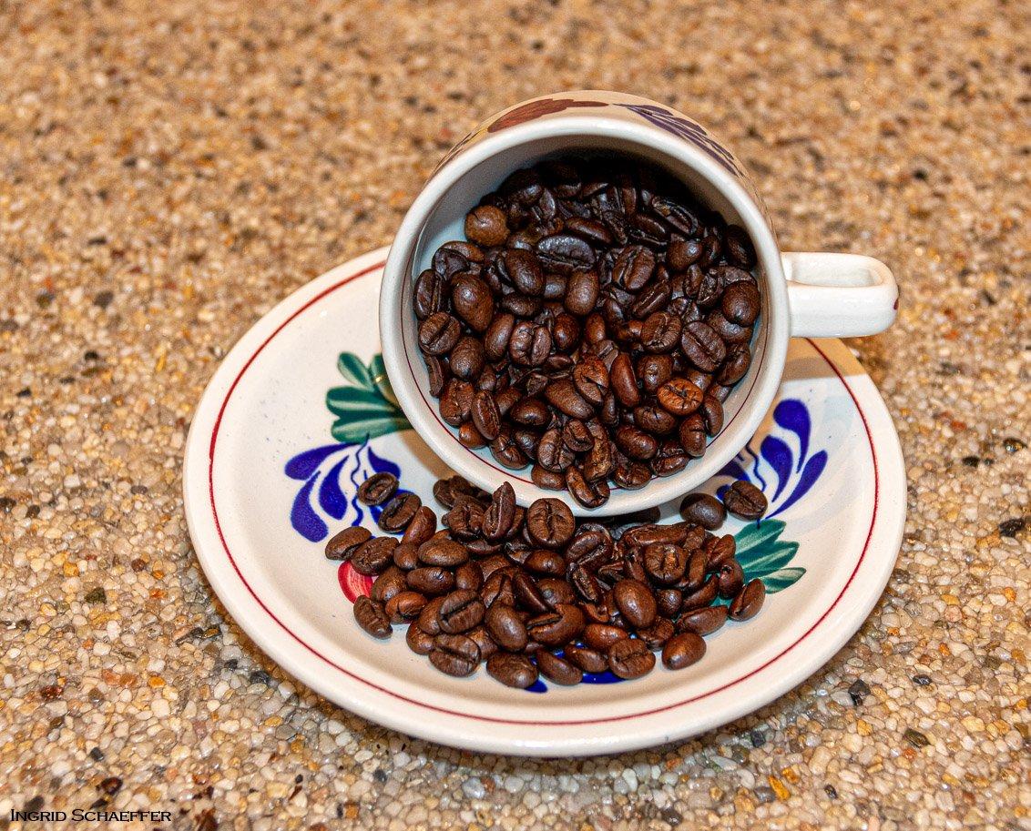 koffie&thee Ingrid (2)