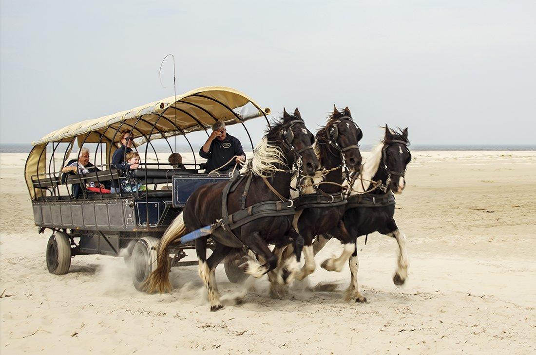 vervoermiddel Joke (1)
