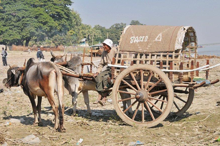 vervoermiddel Wim (2)