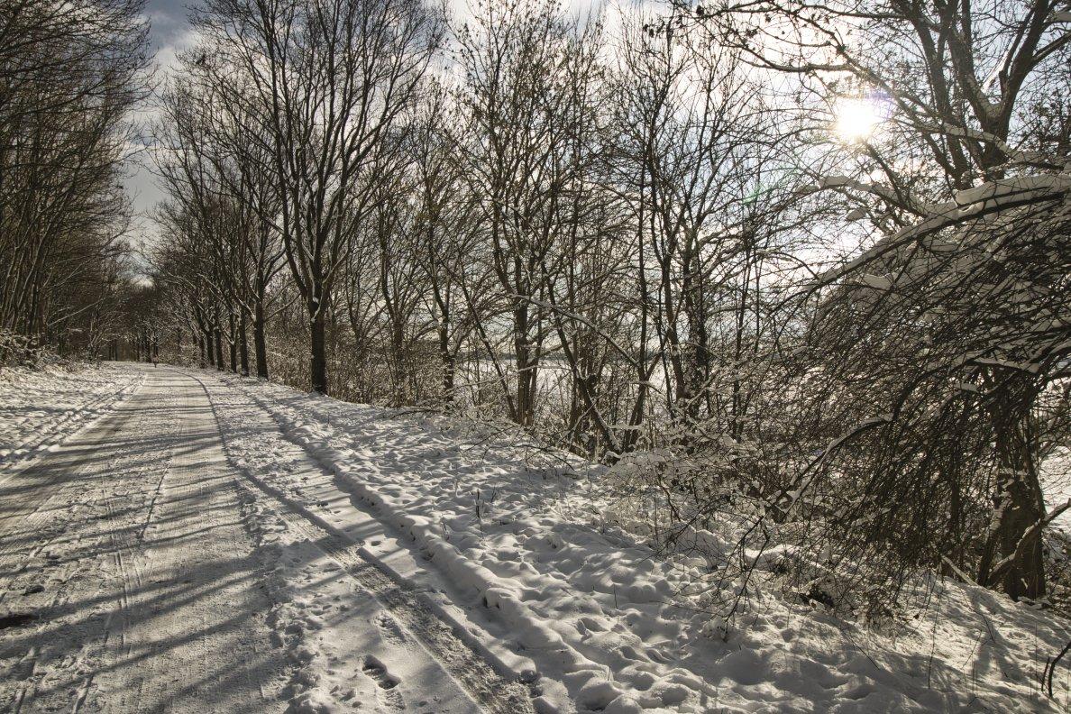 Winter Frans 3