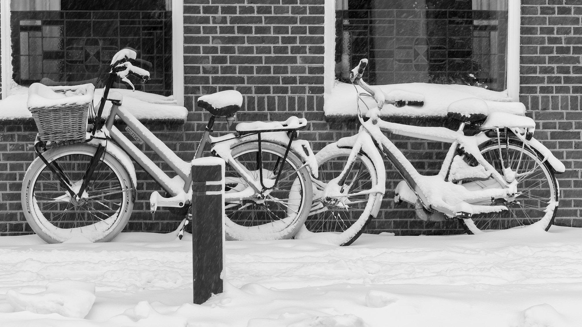 winter Christine (1)