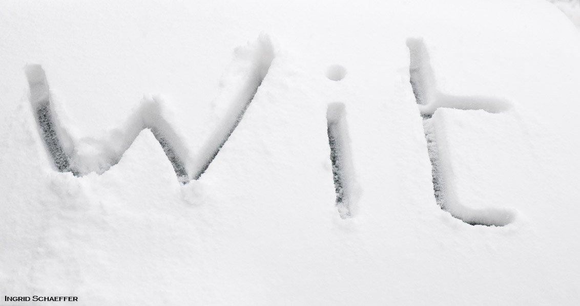 winter Ingrid (3)