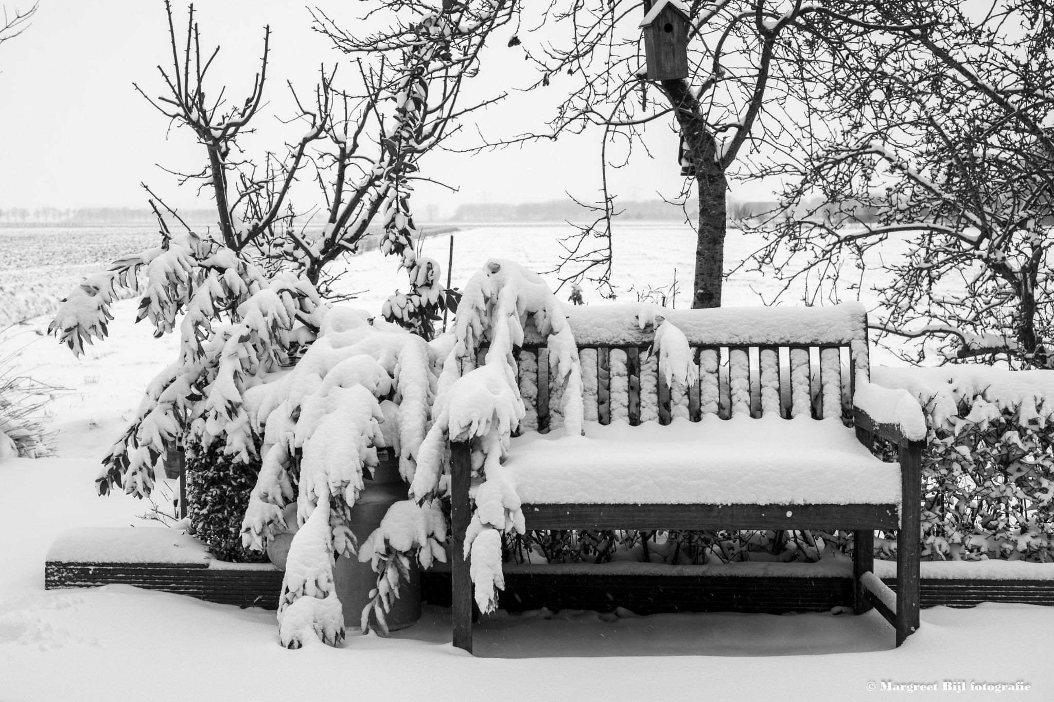 winter Margreet (1)