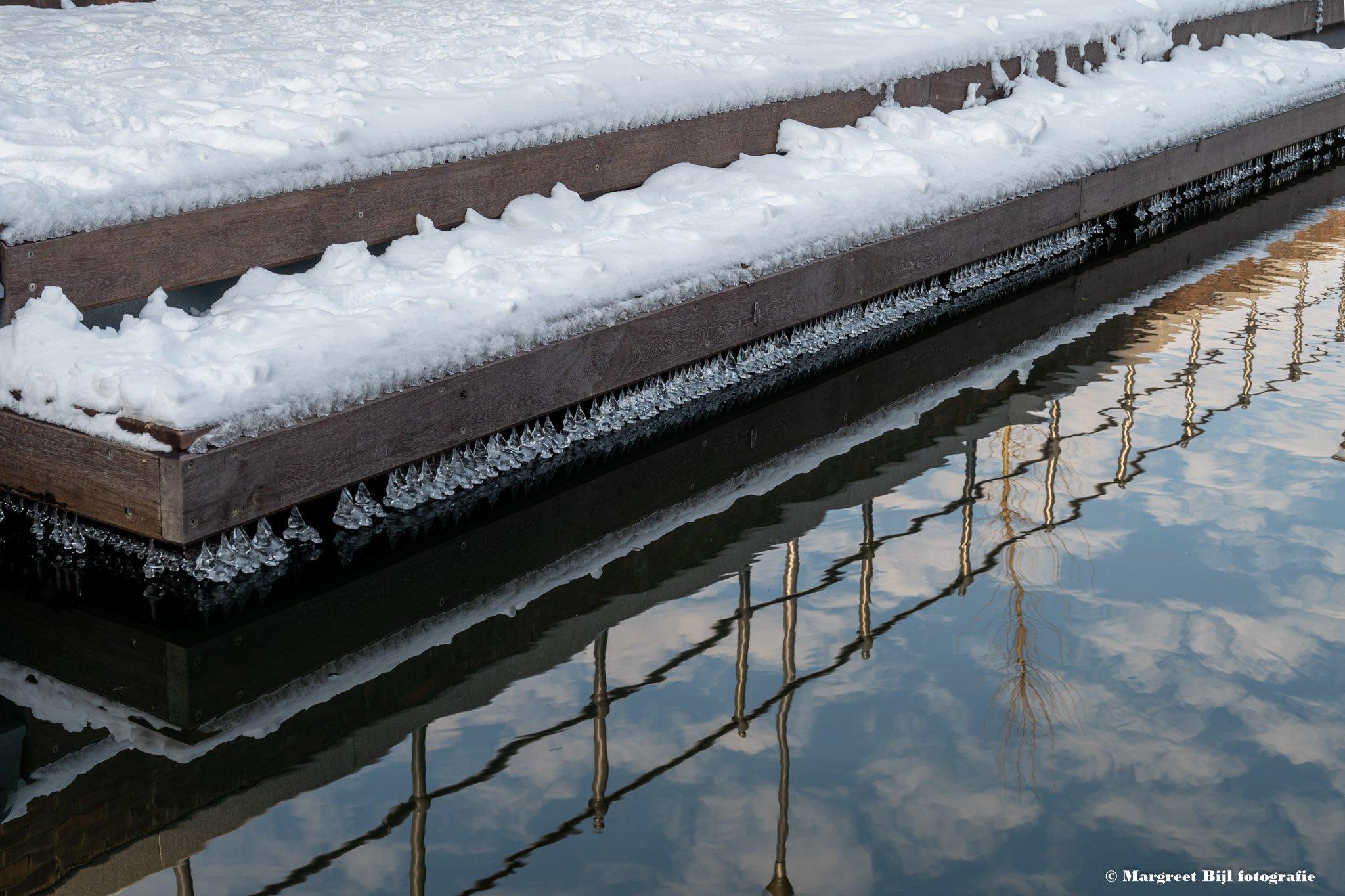 winter Margreet (3)