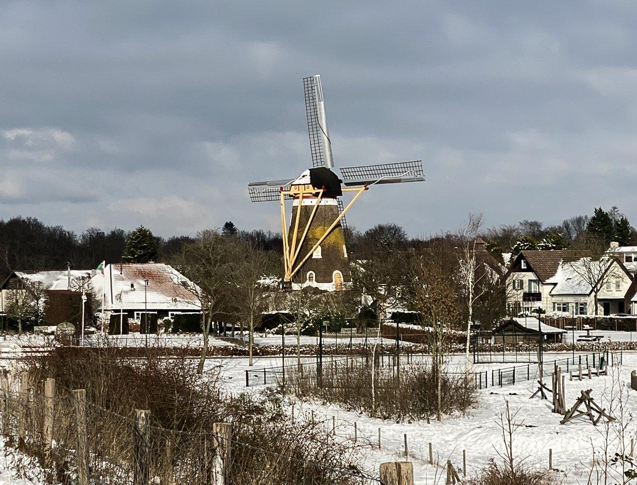 winter Marion (2)