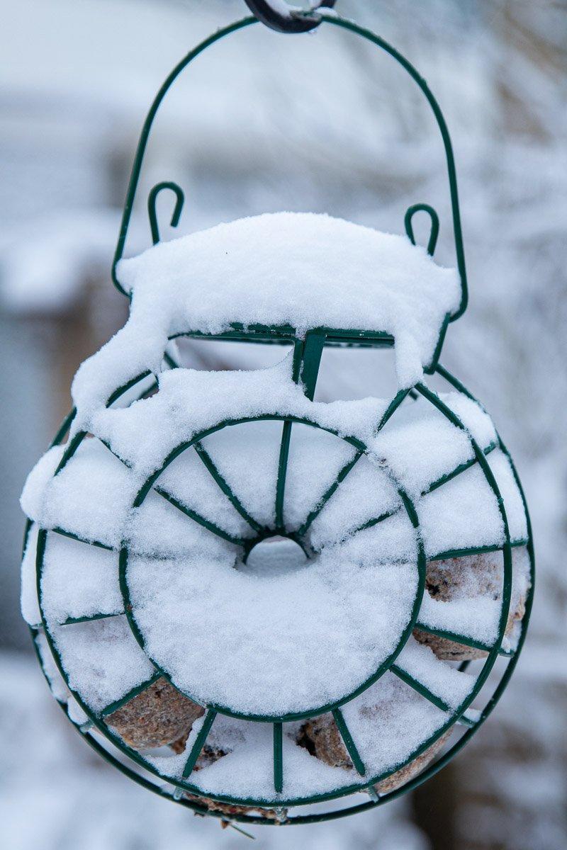 winter Mieke (3)