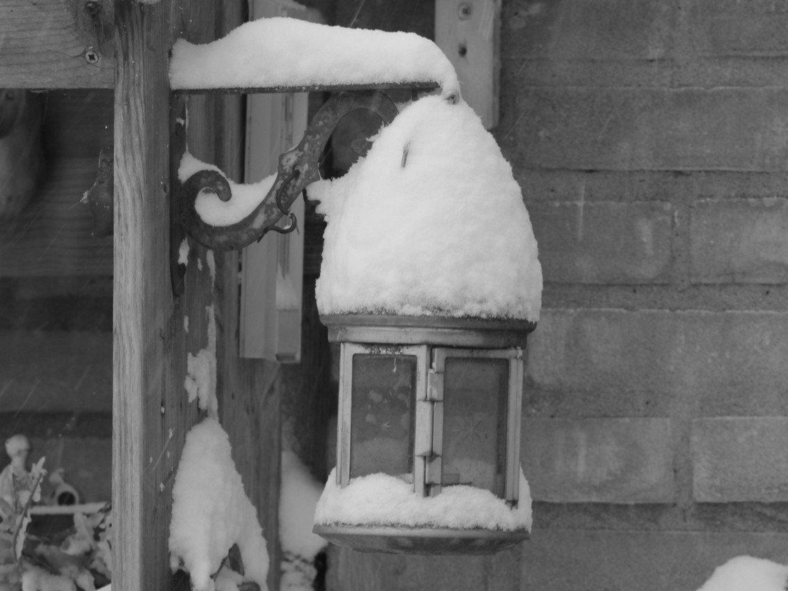 winter Nel (2)