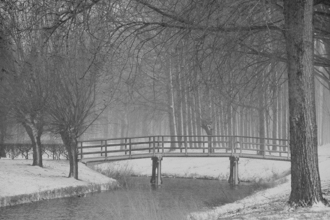 winter Nel (3)