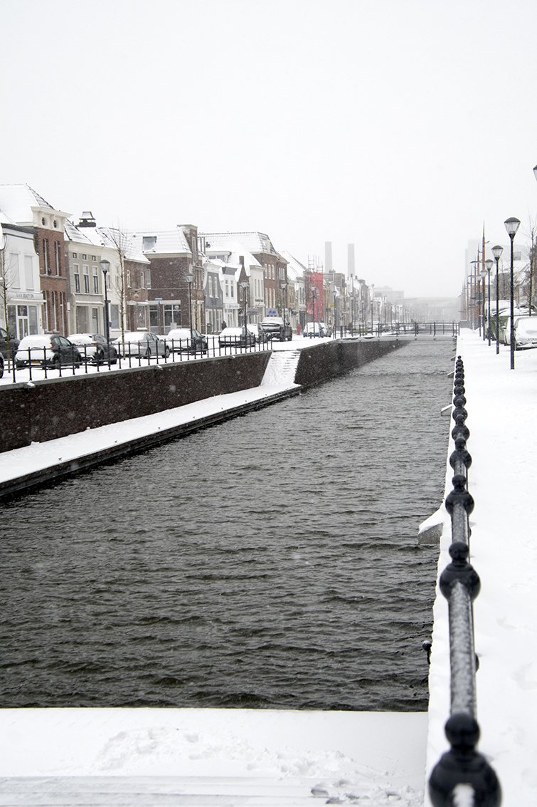 winter Ruud (1)