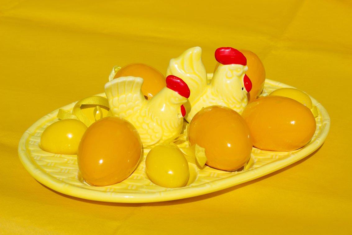 geel Wilma (3)