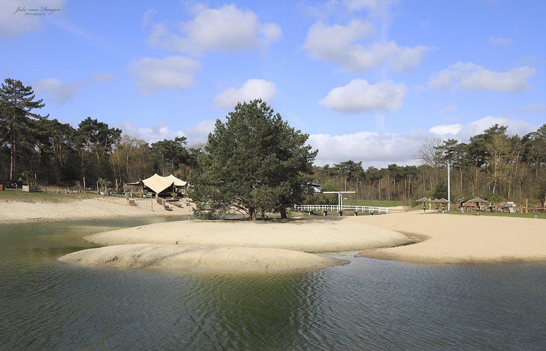 Bergse heide Joke van Rooijen (3)