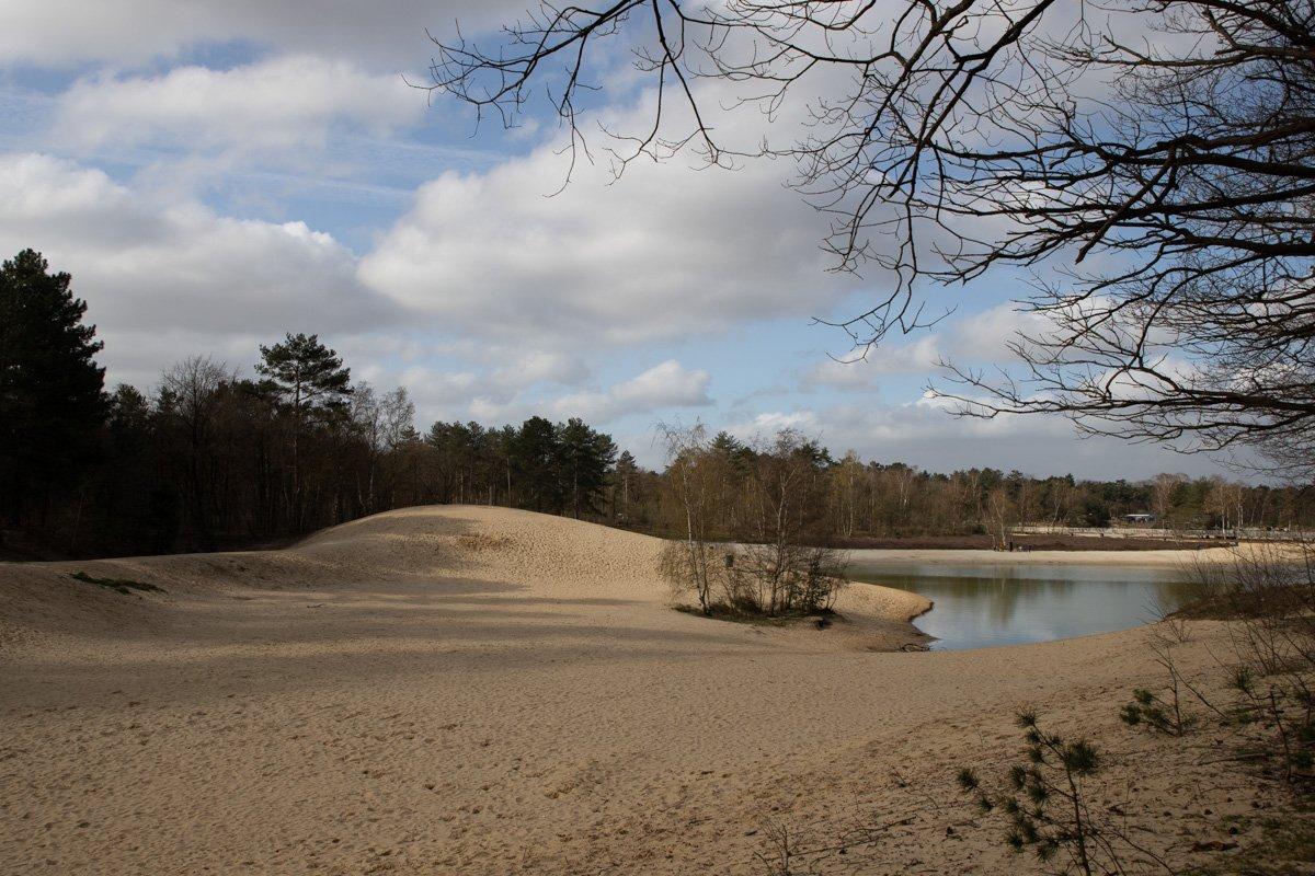 Bergse heide Mieke (3)
