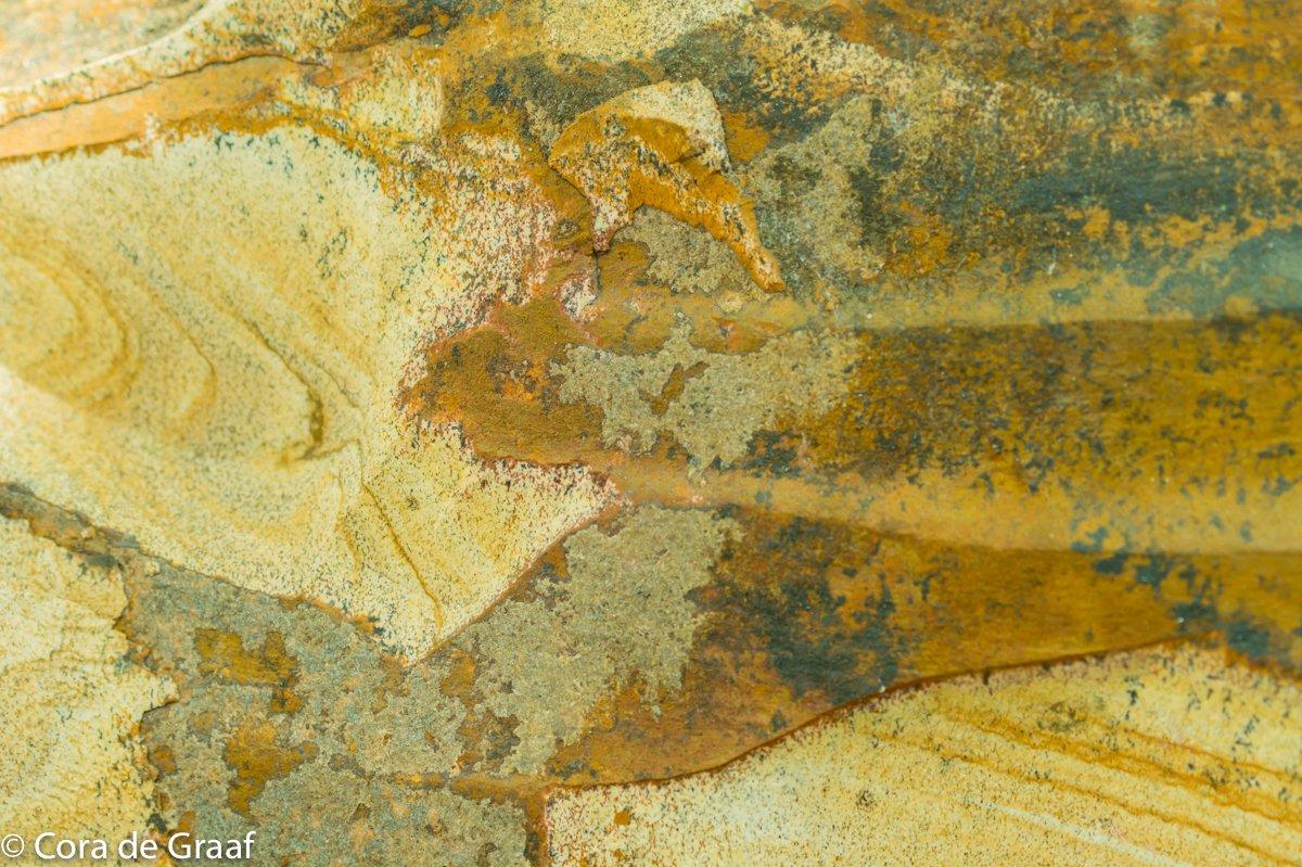 textuur Cora (1)