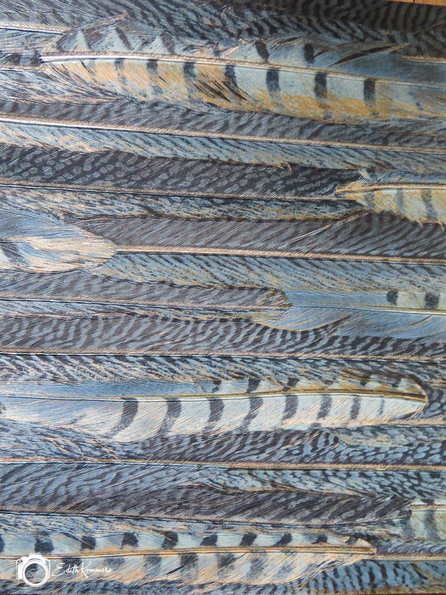 textuur Edith (1)