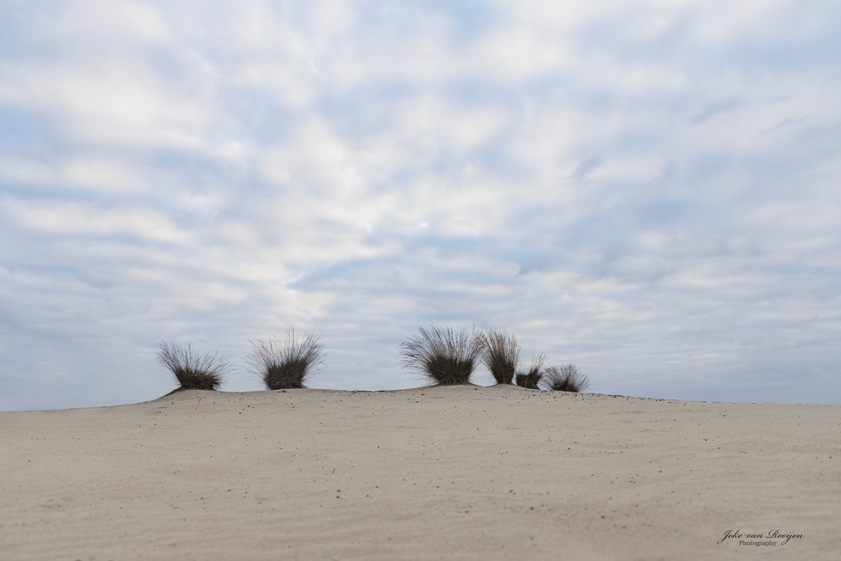nat3 Drunense duinen Joke (1)