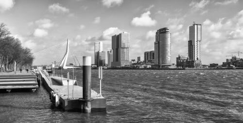 MD Rotterdam (10)