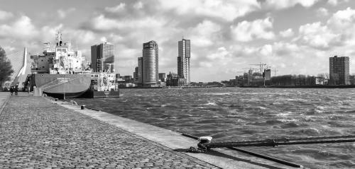 MD Rotterdam (5)