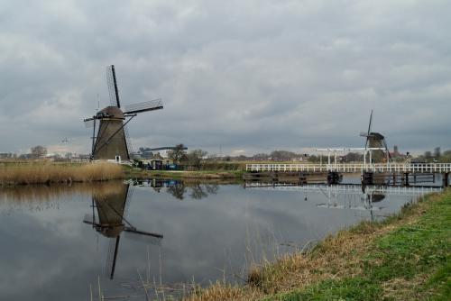 Natuur-2 Kinderdijk (2)