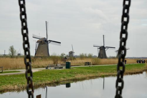 Natuur-2 Kinderdijk (5)